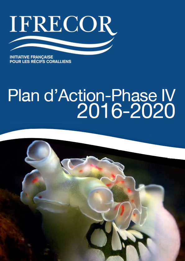 plan-action-4-bis